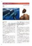 画像6: 新臨床家のためのホメオパシー マテリアメディカ 上下巻セット (6)