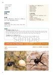 画像17: 新臨床家のためのホメオパシー マテリアメディカ 上下巻セット (17)