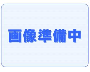 画像1: マヤ暦の向こうに 第四集 神世を開く扉 上 (1)